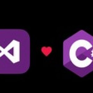 The Complete C#+Visual Studio Developer Course For Beginners