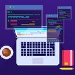 C Programming and Software Engineering Fundamentals