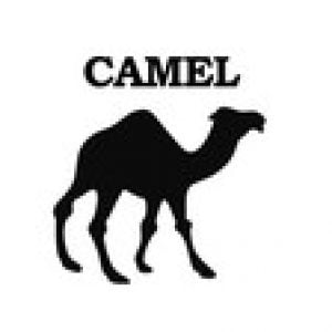Apache Camel for Beginners - Learn by Coding in Java