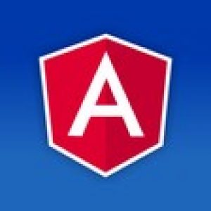 The Complete Angular Course: Beginner to Advanced