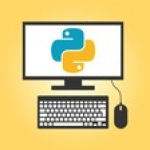 Writing High Performance Python