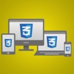Build Responsive Real World Websites with CSS3 v2.0