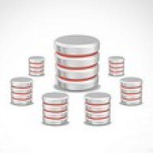 Oracle Database 12c RAC Administration