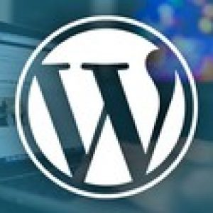 The WordPress Bootcamp: Build 11 Websites with WordPress
