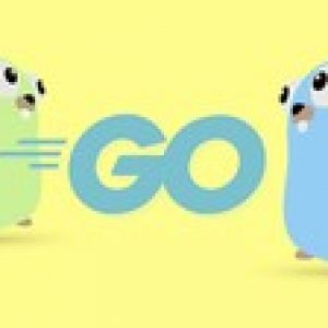 Go (Golang): The Complete Bootcamp [Updated: December 2019]