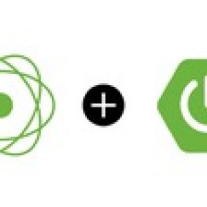 Build Reactive RESTFUL APIs using Spring Boot/WebFlux