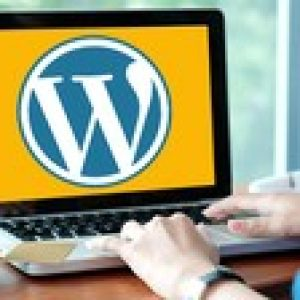 Easily Build A WordPress Website - Avada Theme