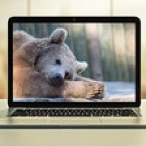Hibernate: Advanced Development Techniques
