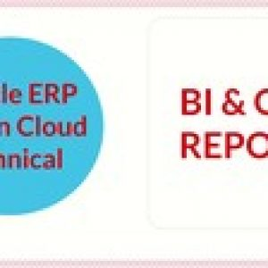 Oracle Fusion Technical-Business Intelligence & OTBI Reports