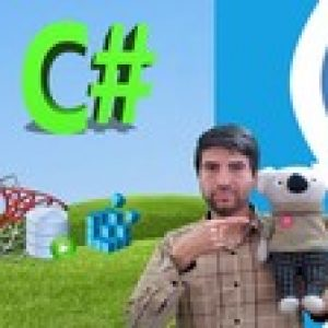The Complete C# Course:Beginners to Pro C#|Stimul Report|SQL