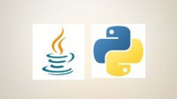 Complete Python and Java Programming BUNDLE
