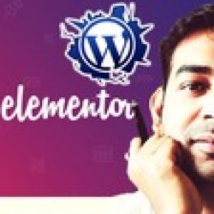 Elementor - Build Stunning WordPress Landing Page in minutes