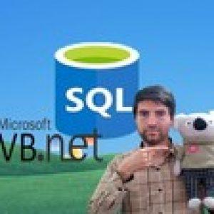 SQL in VB.Net Series:Beginners Database Apps by VB.Net & SQL