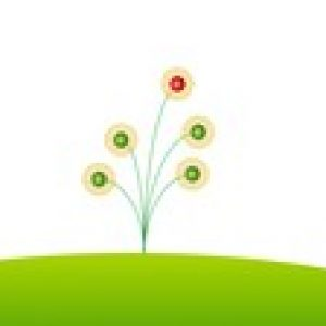 Spring Framework and Spring Boot for Java