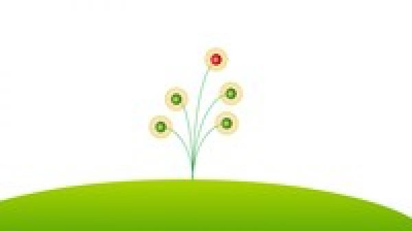 Spring Framework and Spring Boot for Java