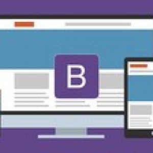 Web Development with BootStrap - 16 Instant Themes Included!