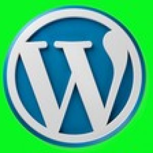 Wordpress for beginners :Build Websites Fast without Coding