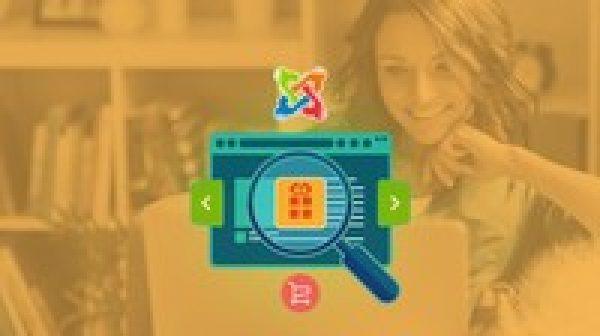 Create a Successful Multivendor Website Like Amazon