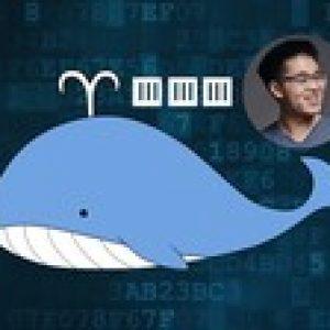 Docker Crash Course for busy DevOps and Developers