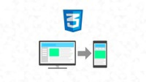 Professional CSS Flexbox
