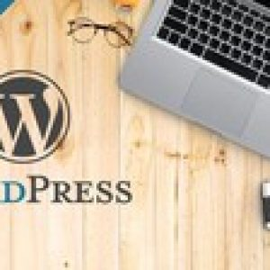 WordPress errors and how to fix them