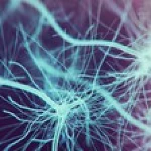 Machine Learning: Build neural networks in 77 lines of code