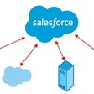Salesforce Integration Architecture Designer Practice Exams