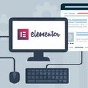 Web Design Training with Elementor