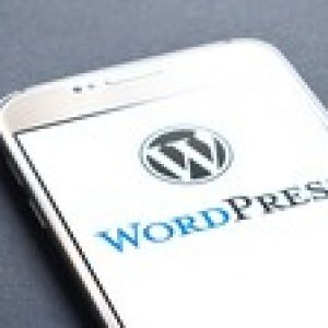 WordPress Tutorial For Bloggers | Beginners To Advanced