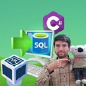 SQL in C# Series: Publish SQL Server Apps by C# in Users PC