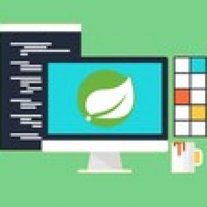 The Ultimate Spring Data Developer Course