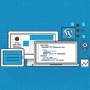 Build Professional Wordpress Websites as a Complete Beginner