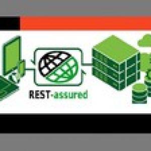 RestAssured - Best for Automation Beginner |Realtime Project
