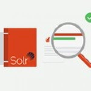 Introduction to Apache Solr 8