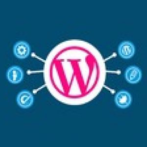 Create eye-catching WordPress website from scratch