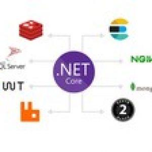 Hands on ASP.NET Core 3.1 production grade API Development