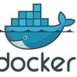 Docker for .Net and Angular Developers