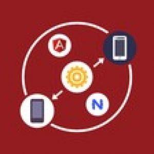 NativeScript for the Angular Developer