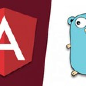 Angular and Golang: A Practical Guide