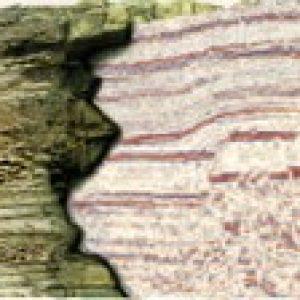 Geophysics for Non Geophysicist