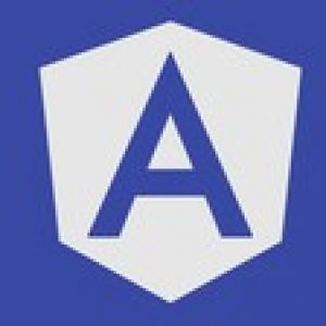 The Complete Angular Material Course: Beginner to Advanced