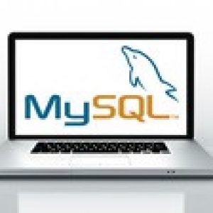 The Complete 2021 SQL Bootcamp - Data Querying Essentials