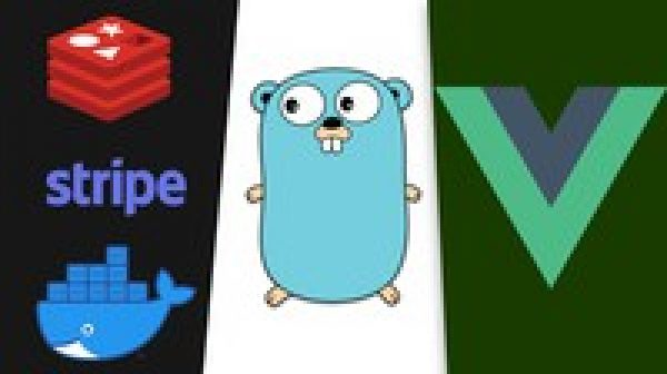Vue 3, NuxtJS and Golang: A Rapid Guide - Advanced