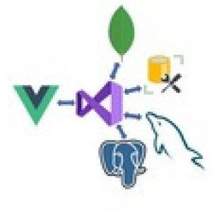 Vue JS and .NET Core Web API Full Stack Master Course