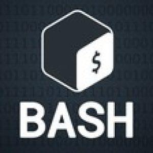 Bash Shell Scripting: Up & Running for Beginners